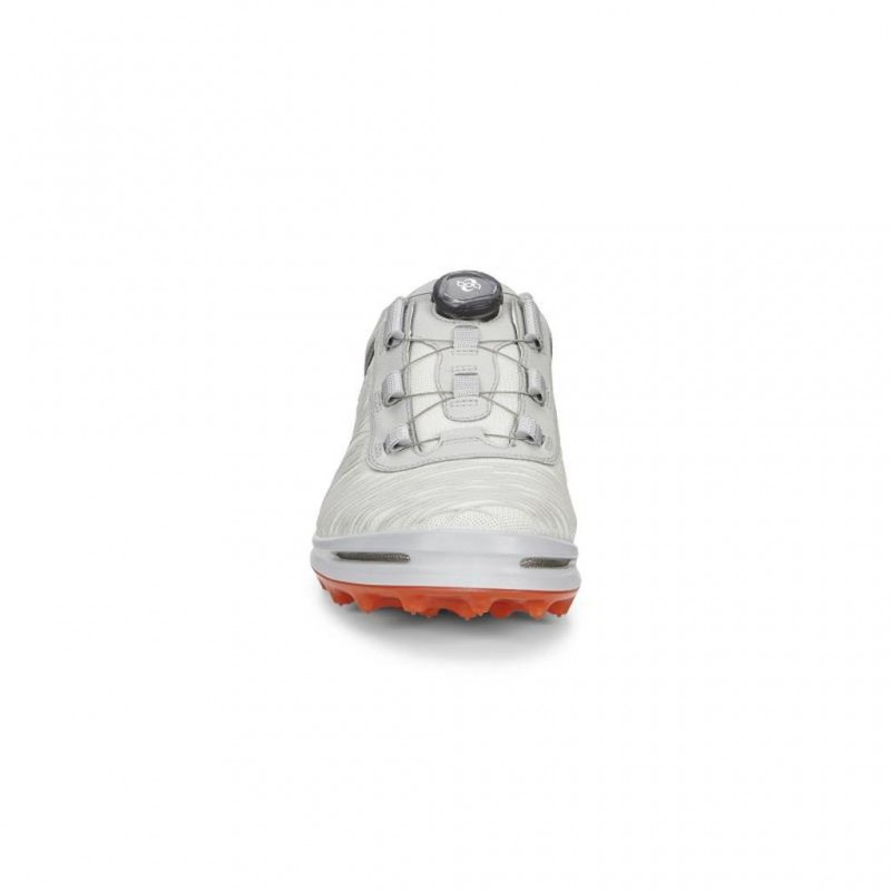 CHAUSSURES ECCO MENS GOLF CAGE PRO